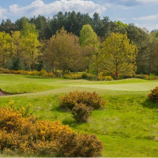 Pairs Betterball Stableford at Market Rasen Golf Club