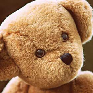 Teddy Bears Day at Lincolnshire Wolds Railway