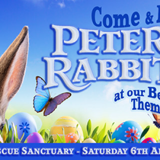 Peter Rabbit and Beatrix Potter themed event for the Easter Half Term